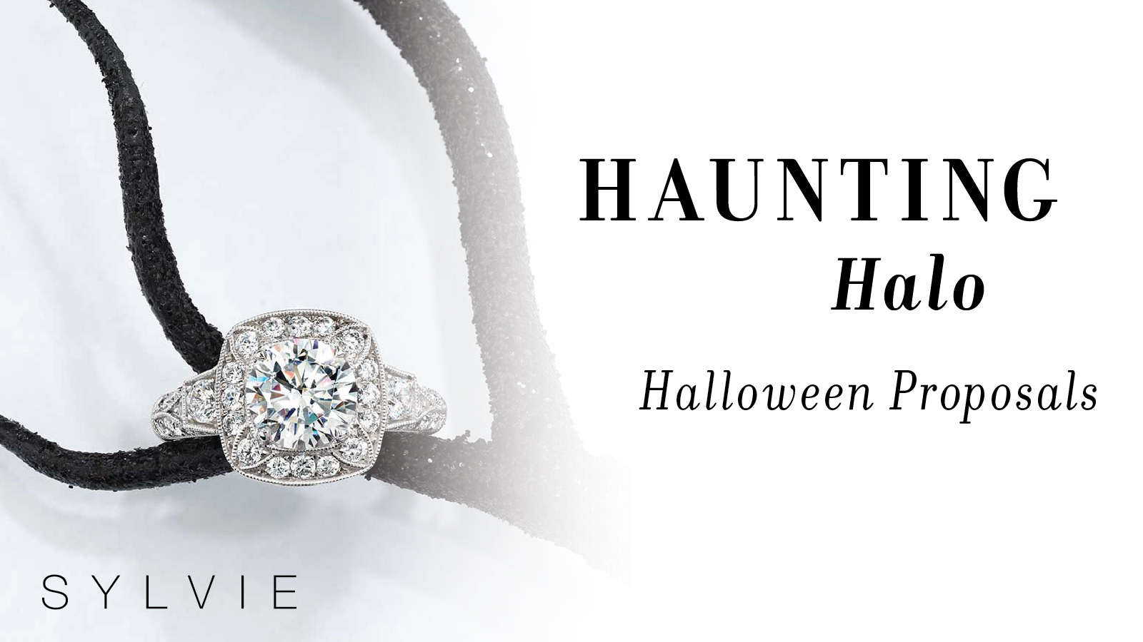 Haunting Halo Halloween Proposals - Sylvie Collection